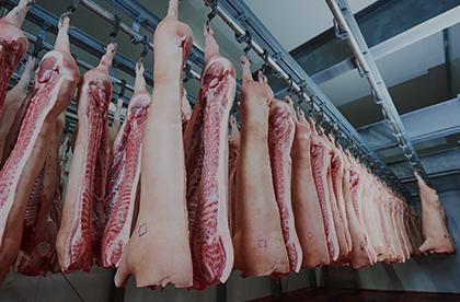 Cámaras frigoríficas para carnicerías