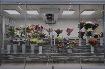 Cámaras frigoríficas para floristerías