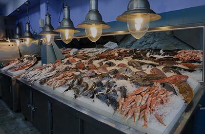 Cámaras frigoríficas para pescaderías
